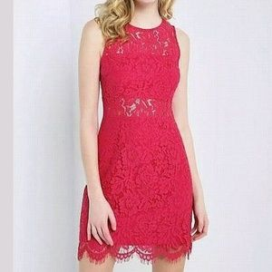 STUNNING SOPRANO lace Party dress